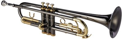 Trompete Bb Roy Benson TR-101K anthrazit