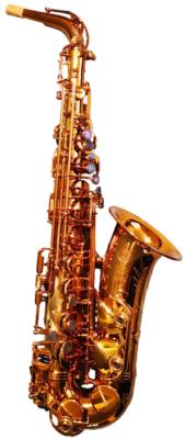 Occ. Alt-Saxophon Selmer Reference 54 (Firebird) Goldlack